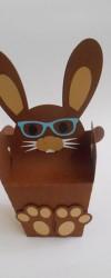coelho-castanho