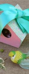 Embalagem Ninho de Pássaro