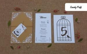 Convite de Casamento Bird Cage